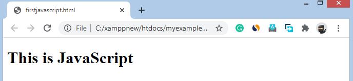 javascript in html